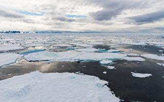 禁北冰洋中部商业捕鱼 加与欧盟及8国签协议