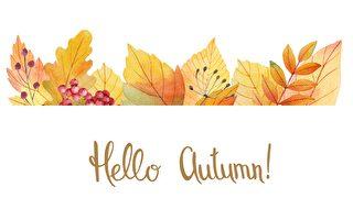 秋季养生 减肥美容良品