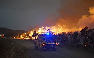 昆州百余山火仍在燃烧 州长:还没脱离危险