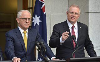 澳洲總理莫里森拒絕再派特恩布爾出國赴會
