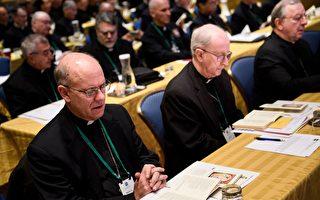 梵蒂冈推迟美国神父反性侵投票
