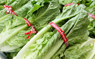 罗马生菜大肠杆菌疫情再发 库默吁停食