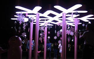 屏东圣诞节超粉嫩  百年公园萌化幸福