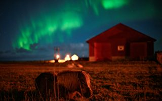 組圖:法國攝影師在挪威拍到「浴火鳳凰」
