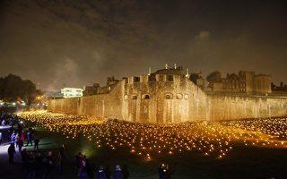 一战结束百年 伦敦塔旁点燃万支纪念火炬