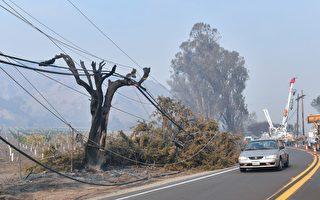 南加爱迪生:电力设施引燃托马斯大火
