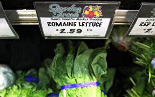 FDA:致病生菜可能来自加州