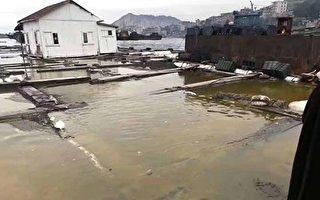 泉港碳九泄漏后续 官方不管渔民未来生计