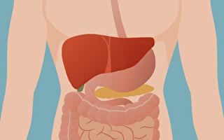让肝脏变好的11个方法 每一种你都能做到