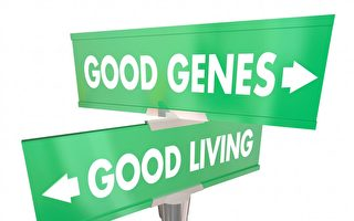 機密研究:壽命長短關鍵因素並非基因