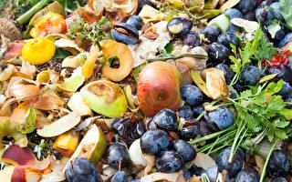 加拿大每年浪费价值310亿元食物