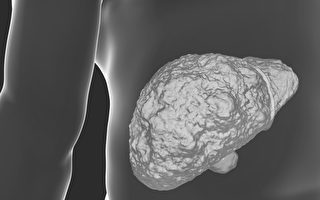 肝硬化能恢復正常嗎?