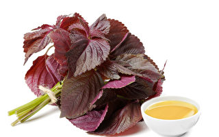 紫蘇油抗老 抗腸癌 有5種健康益處