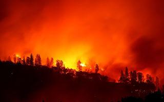 澳洲野火烧掉一个南韩面积 灾区恐再升温
