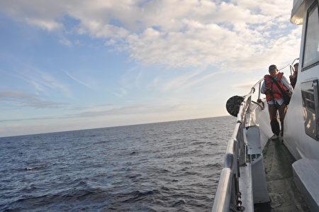 花蓮河川治理連2年獲金質獎,海岸工程觀摩首創搭賞鯨船。