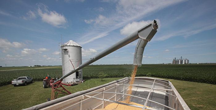 中國農產品期貨持續上漲 大豆漲幅令人咋舌