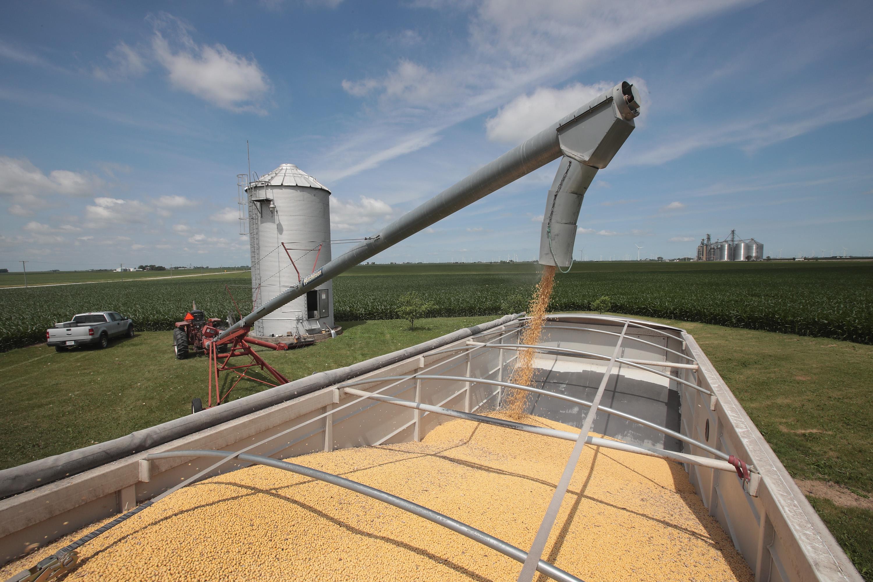 中國購58.5萬噸美國大豆 4月份來最大宗