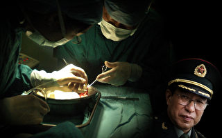 玉清心:2018年中共仍在活摘法轮功学员器官