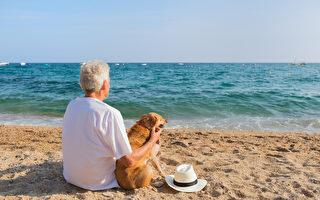 退休後還可以做什麼 高齡社媒合再就業