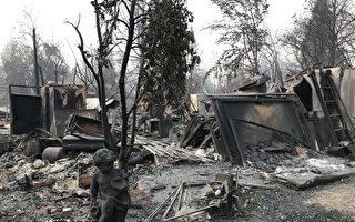 加州野火废墟清理工程至少花费30亿美元