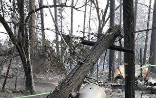 北加州野火調查:PG&E起火點發現彈孔彈殼