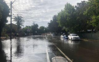悉尼南区水管爆裂 大水似瀑布 淹数家民宅