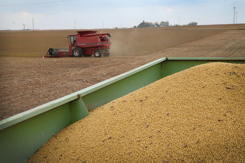 形勢所迫 中共外交部稱將加快採購美農產品