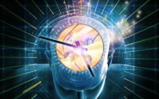 研究:大脑靠两套时钟预测未来
