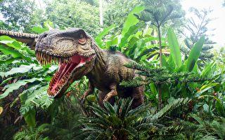 侏罗纪太空旅行就在身边!3D艺术馆大开眼界