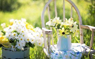 保护夏日植物