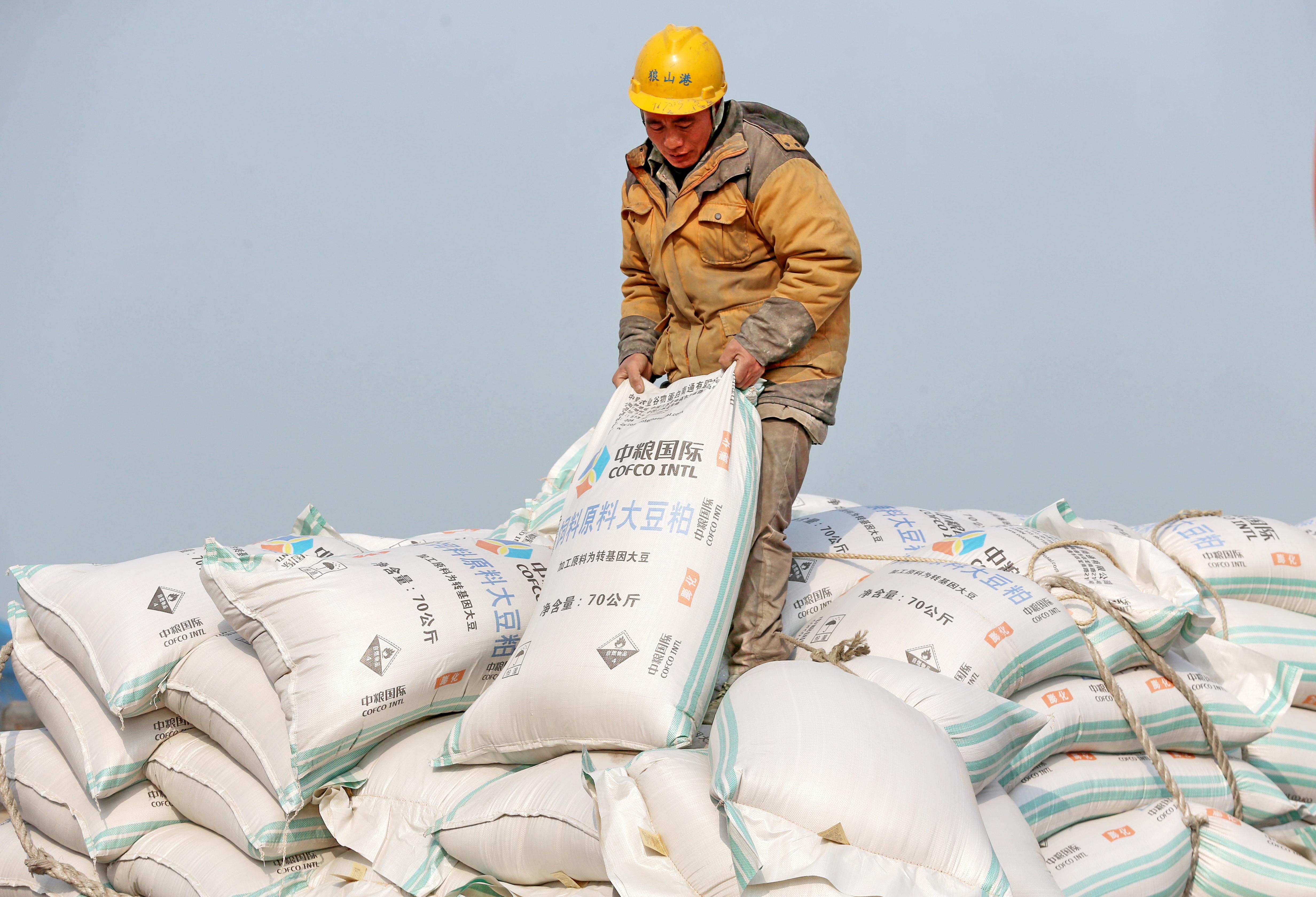 緩解貿易戰中共購美大豆 不料非洲豬瘟攪局