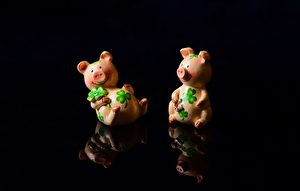 為何說「火到豬頭爛」? 亥年說豬諺語