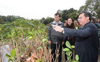 镬笃陂塘生态公园绿美化  结合埤塘和公园设计