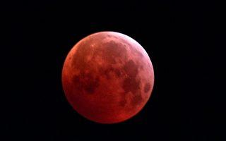 组图:三大天文奇观合一 超级血狼月登场