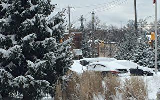 下周一  预计多伦多降雪15厘米