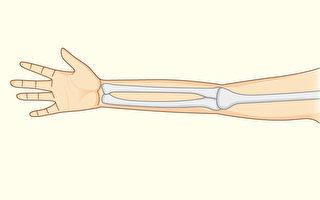 我們的骨骼比祖先脆弱很多,怎樣增加骨骼強度?