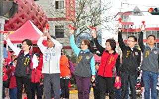 大湖草莓嘉年華馬拉松 週六清晨開跑