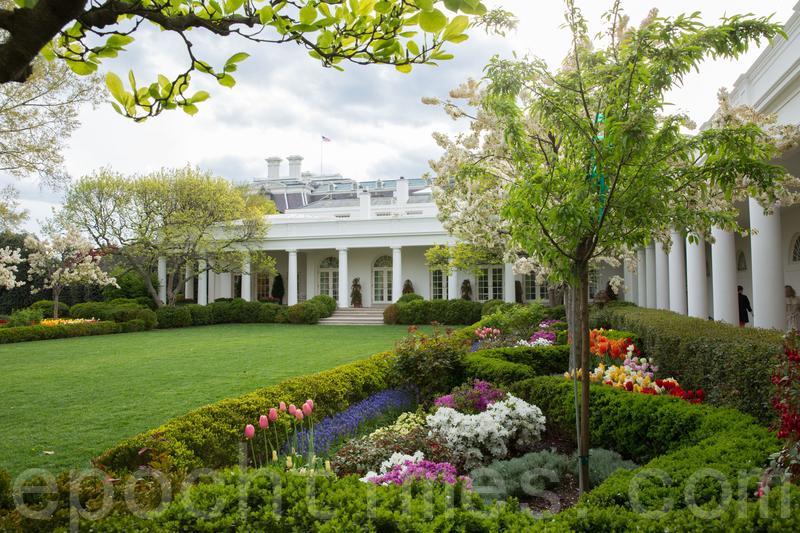 白宮西側玫瑰園。圖片拍於2018年4月。(Samira Bouaou/大紀元)