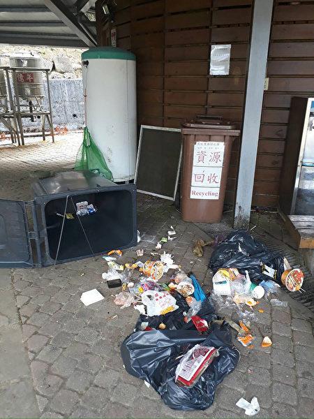台湾黑熊翻垃圾桶 近30年首访塔塔加留证据