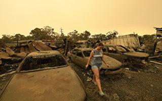 澳大利亚新州北部山火烧 毁近2万公顷林地