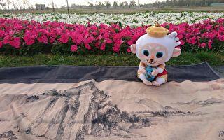 春遊故宮南院  賞花趣味攝影賽胖卡市集