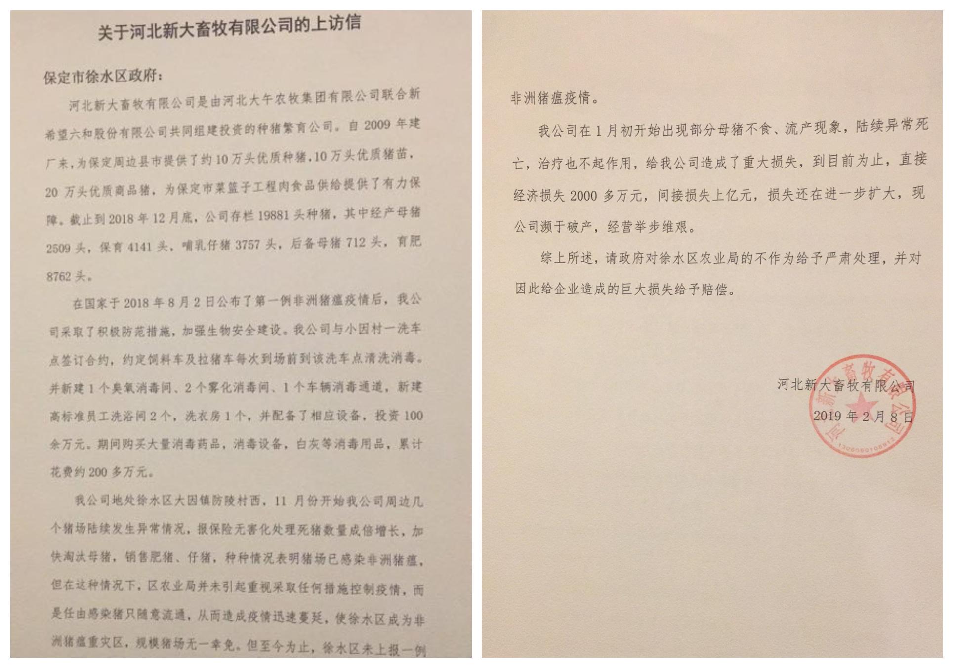 2月8日,新大畜牧公司向徐水區政府發出「上訪信」,陳述豬瘟疫情,要求政府賠償。但官方沒有回應。(受訪人提供)