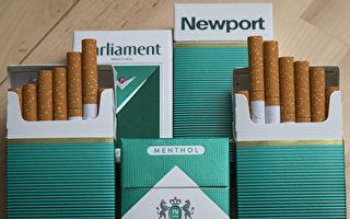 新西蘭將禁止車內有兒童時吸煙和電子菸