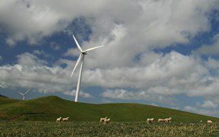高电价令电力公司大赚:支持工作组建议