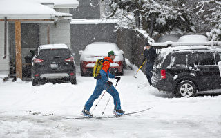 几十年罕见!西雅图遭遇强降雪