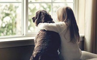 少女忍泪送走爱犬 7年后收养同名老狗竟团圆
