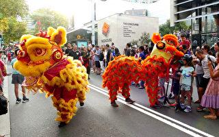 悉尼華人重鎮辦遊行 為豬年賀新慶典劃句點