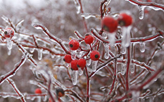 周三中午开始 大多地区下冰雨