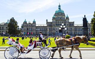 加拿大浪漫之城排名 维多利亚连续7年夺冠