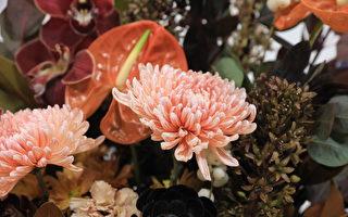墨尔本国际花卉园艺展:当艺术邂逅大自然